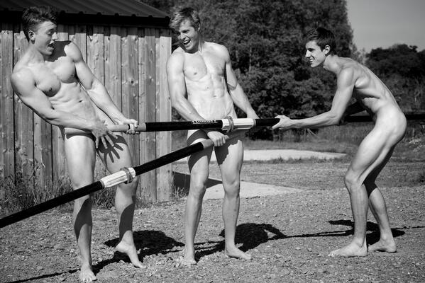 Hommes gais organisation sociale chicago